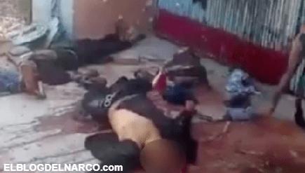 Vídeo fuerte donde Sicarios ejecutan brutalmente a sus rivales en Aguililla, Michoacán