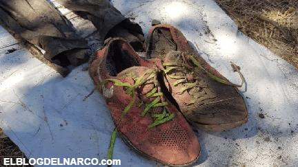 Hallan ocho cadáveres en tambos, en Valle de Las Palmas, en Tijuana