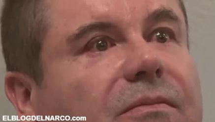 """VIDEO El día que """"El Chapo"""" lloró en cara de los agentes, el otrora narco más peligroso del mundo"""