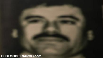 """El ascenso """"el Mayo"""" Zambada, de lavacoches a líder del peligroso Cártel de Sinaloa"""