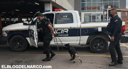 Terror e incertidumbre en Chihuahua por amenaza de bomba en supermercado