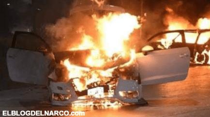 Violencia en Sonora, encontraron 9 cadáveres tras la incursión del grupo del narco Los Salazar
