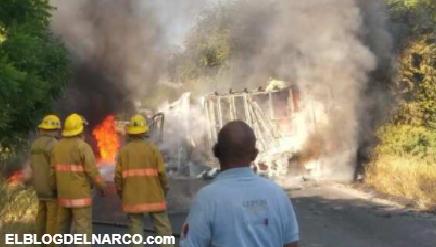 "Sicarios de LNFM realizan ""narcobloqueos"" en la carretera Apatzingán-Aguililla en Michoacán"