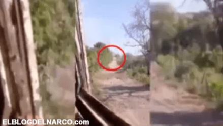VIDEO CJNG incendia camión monstruo con sicarios de grupo rival del Cárteles Unidos dentro