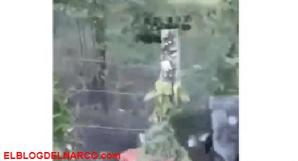VIDEO Así El Mencho a los traicioneros, el CJNG se fractura en Huimanguillo, Tabasco