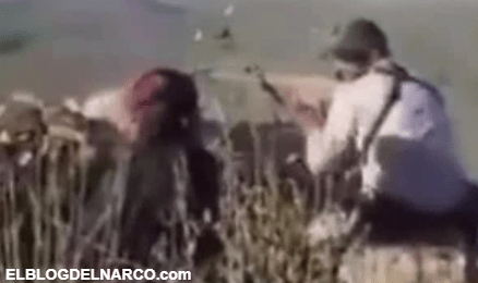 """CDS Chapitos y célula del """"Mayo"""" registran 72 horas de enfrentamientos en Sonora"""