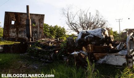 Macabro hallazgo, hallaron 5 cadáveres en la guerra entre Cárteles Unidos y el CJNG
