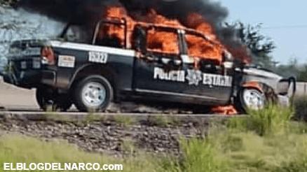 VIDEOS 4 sicarios del CDS abatidos y 2 heridos saldo de enfrentamiento en Sonora
