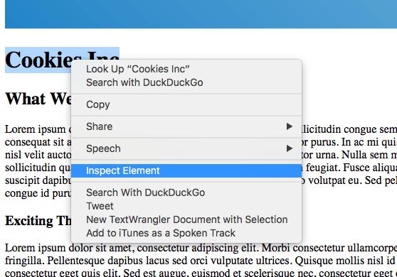 Safari Inspect Element