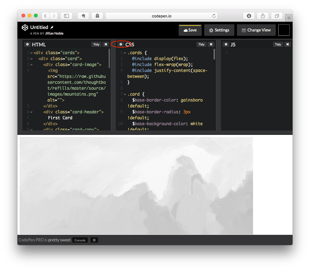 CodePen CSS Settings