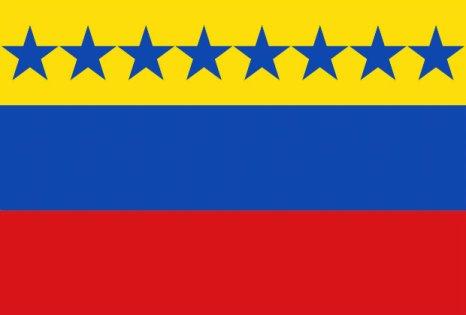 bandera de Angostura_edited