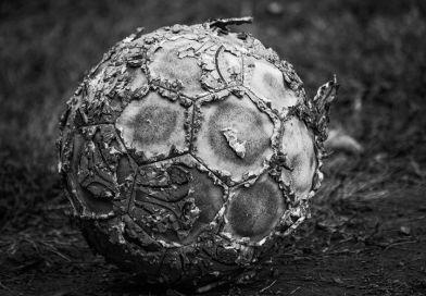Fútbol y covid 19