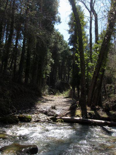 Río Dílar.