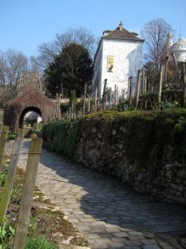 Viñedos de Clos Montmartre