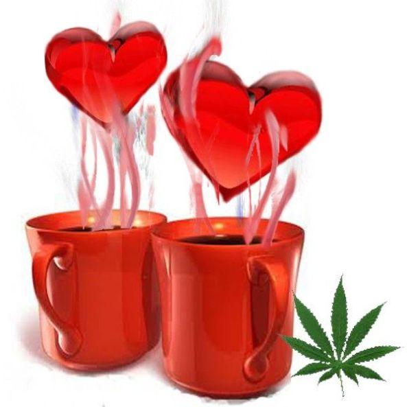te-cannabico-red-love