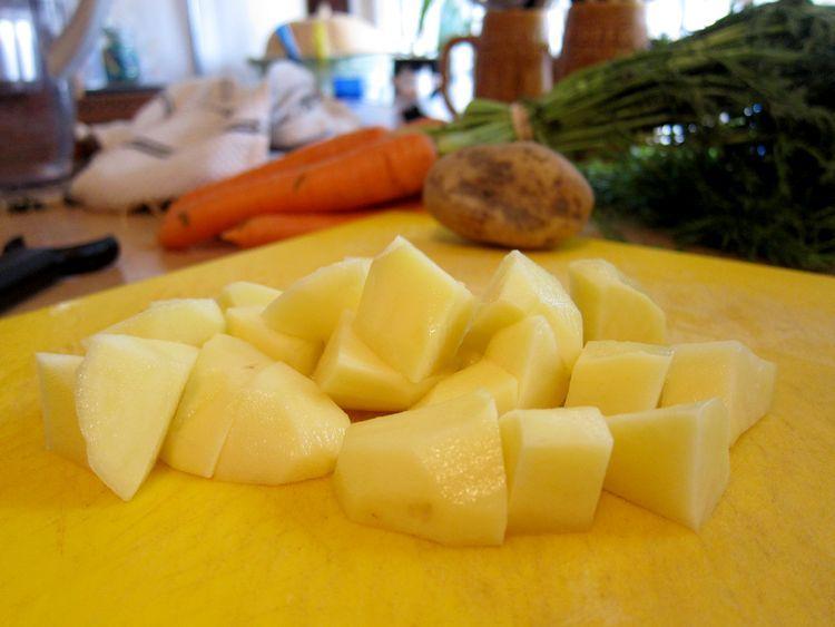 porrusalda-vegetariana-04