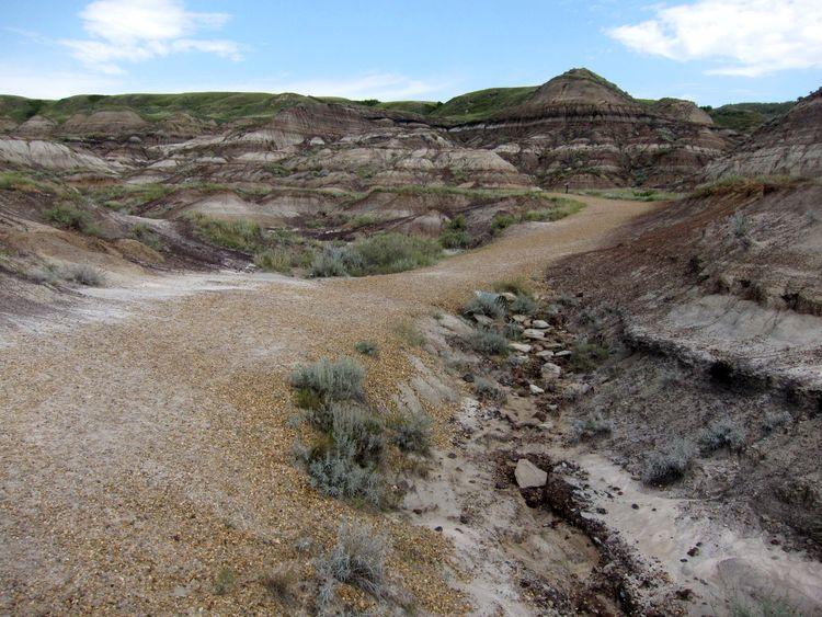 canada-03-dinosaur-trail-06
