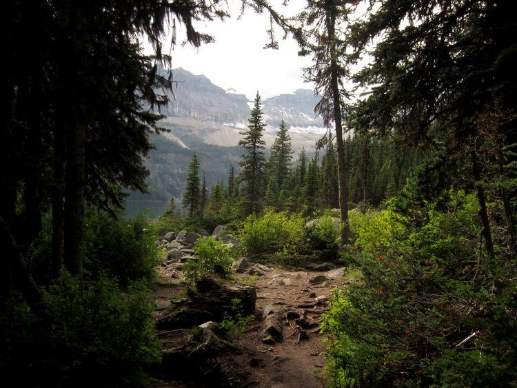 canada-04-banff-national-park-19