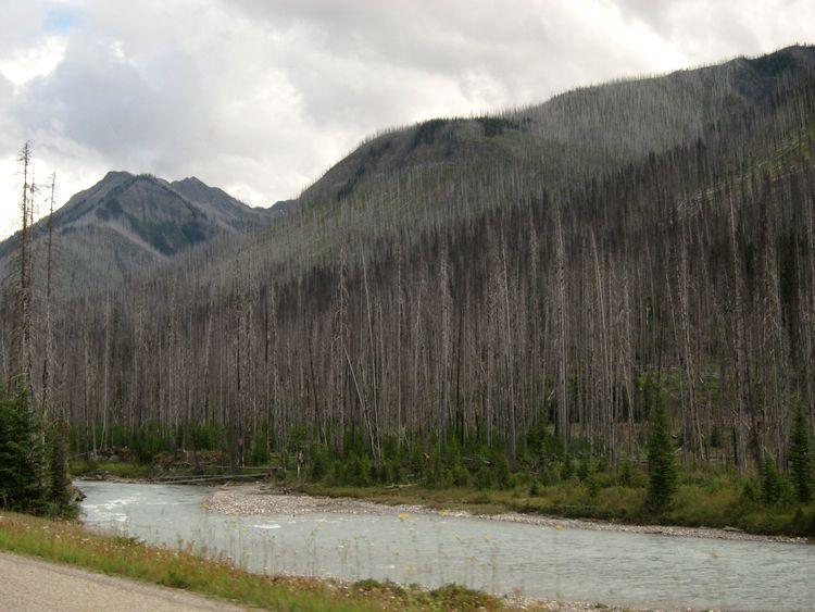 canada-05-lake-moraine-lake-louise-kootenay-drive-20