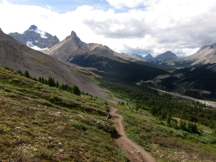 canada-08-ruta-por-icefields-parkway-17