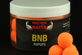 NORTHERN BAITS BNB POP UPS ORANGE 15 mm