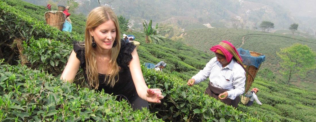 La Ruta del Té: Viaje a la India