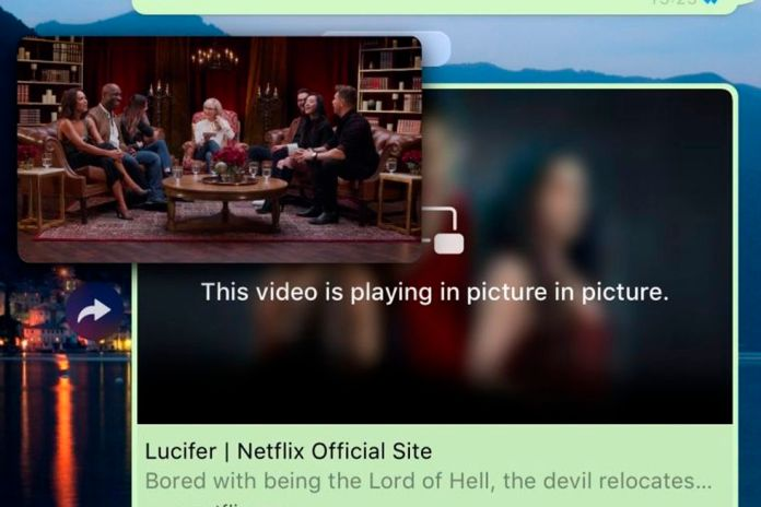 Thanks to the picture-in-picture mode, we can watch the video on Netflix. (Photo: WhatsApp)