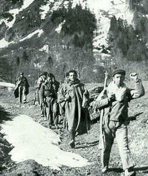 Maquis cruzando los Pirineos