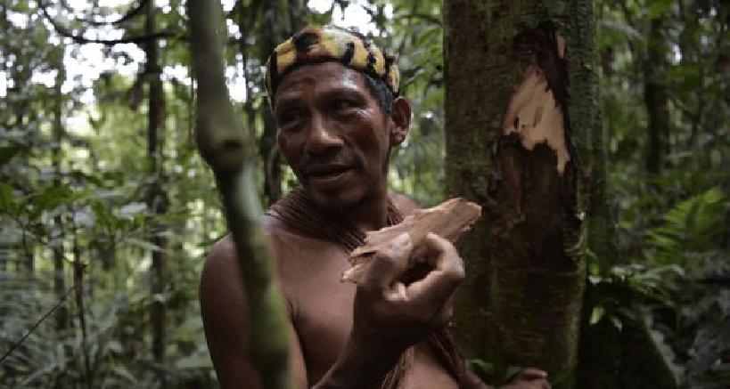 Unos 500.000 indígenas viven en esta región de la Amazonía, incluyendo al pueblo Waorani de Ecuador