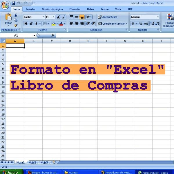 formatos de libros de contabilidad