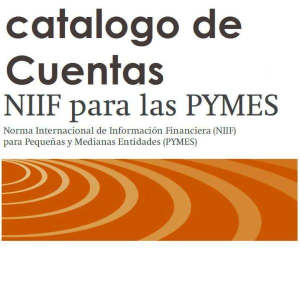 catalogo de cuentas NIIF para Pymes