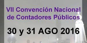 Convencion nacional de contadores de El Salvador, consejo de vigilancia de contadores