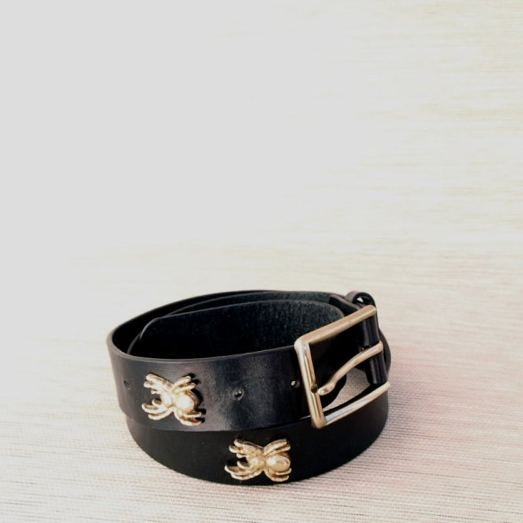 Cinturón negro arañas