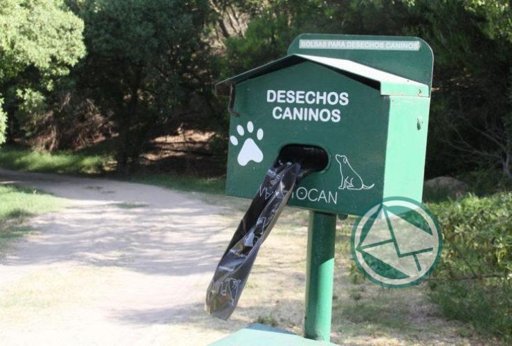 Mar del Plata cuenta con playa exclusiva para mascotas04