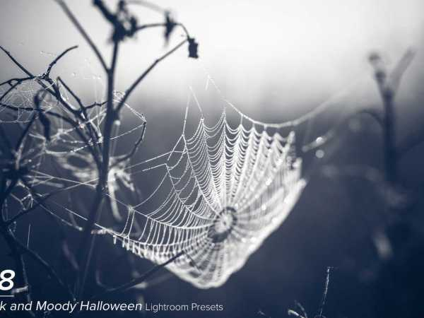 38 Dark and Moody Halloween Presets