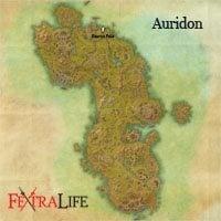 auridon_ashen_grip_set_small.jpg