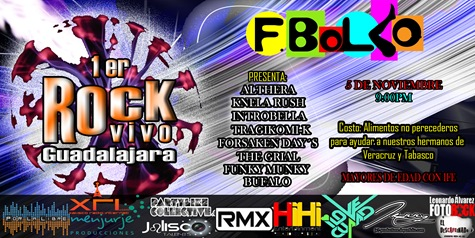 Rock Vivo Guadalajara copia