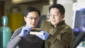 El profesor Liangbing Hu (izq.) muestra la supermadera densa y comprimida que es más fuerte que el acero. Su colega Teng Li sostiene un trozo de madera natural. (Foto: gentileza Hua Xie).