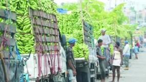 productores-banano