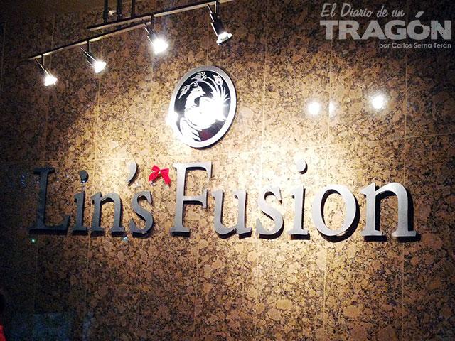 diario-tragon-lins-fusion-1