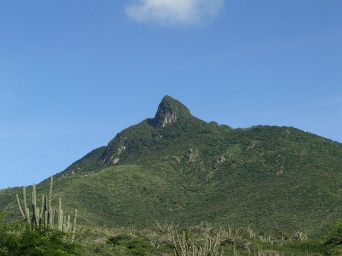 Vista del Cerro Santa Ana
