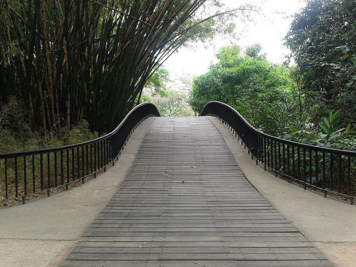 Puente en el Parque Negra Hipólita