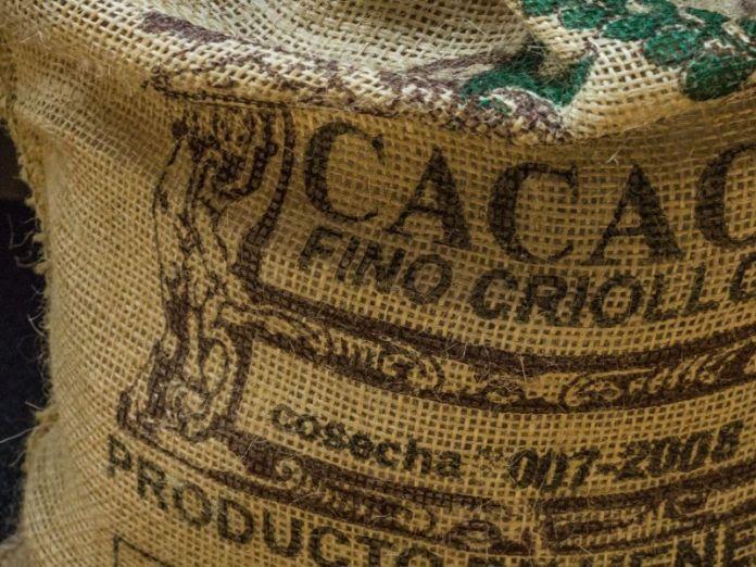 Con el cacao de Paria se producen deliciosos chocolates