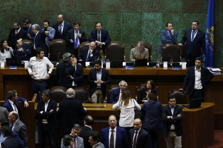 Histórica y unánime votación de Diputados para rebajarse el sueldo