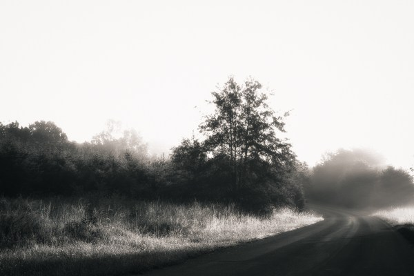Into The Light - Road - Photo