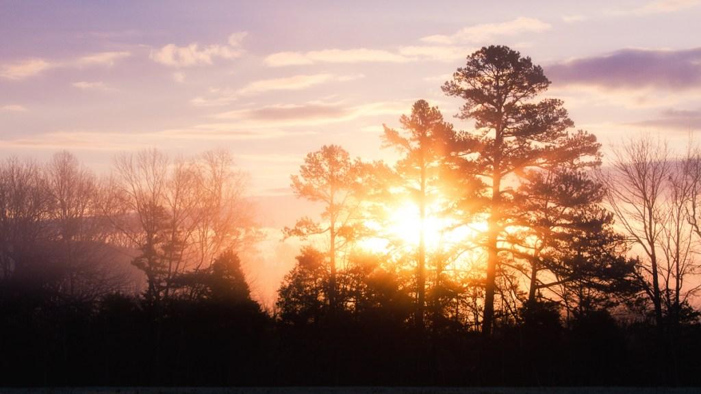 Our Sunrise - Sunrise - Photo