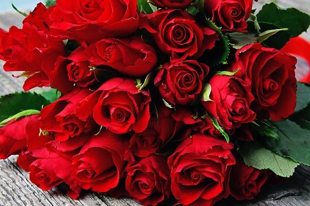 Pourquoi Offrir Une Rose ? (histoire étonnante et signification)