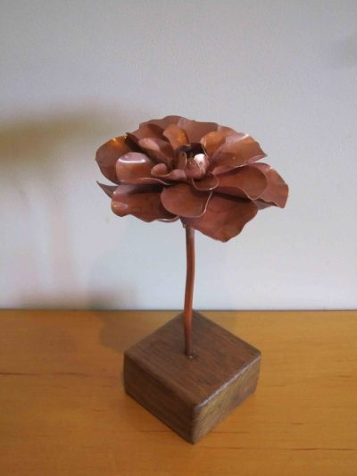 camellia copper flower