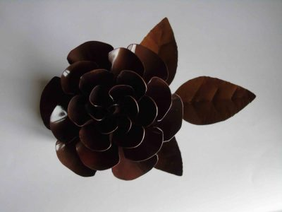 Above view of dark copper rose