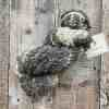 Skein of bulky hand spun yarn, textured and monochrome, by Eleanor Shadow, on wood background